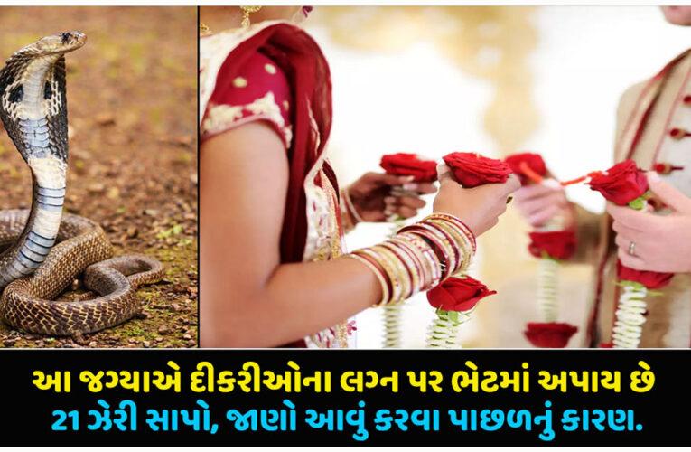આ જગ્યાએ દીકરીઓના લગ્ન પર ભેટમાં અપાય છે 21 ઝેરી સાપો, જાણો આવું કરવા પાછળનું કારણ…